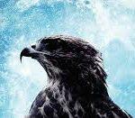 El frío de la muerte de John Connolly por Beckett & Hawk